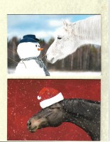 Christmas Cards. Pack of eight. Two Designs