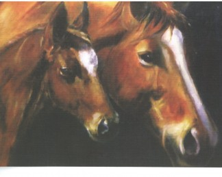Mare and Foal notelet